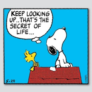 There is nothing I like more than Snoopy and Woodstock.