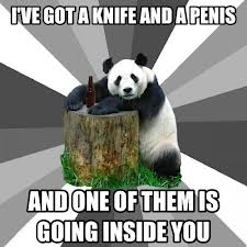 Bad Panda! Jeeze, what is with these animals?